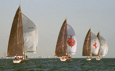 Acura Ocean on New Gallery Additions   Regattas   Awards